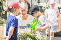 """045 Aktionswoche """"Wiesbaden Engagiert!"""" 2017 EVIM Haus der Kinder Bleichstraße Naspa Immobilien UR Uwe Ries Garten- und Landschaftsbau"""