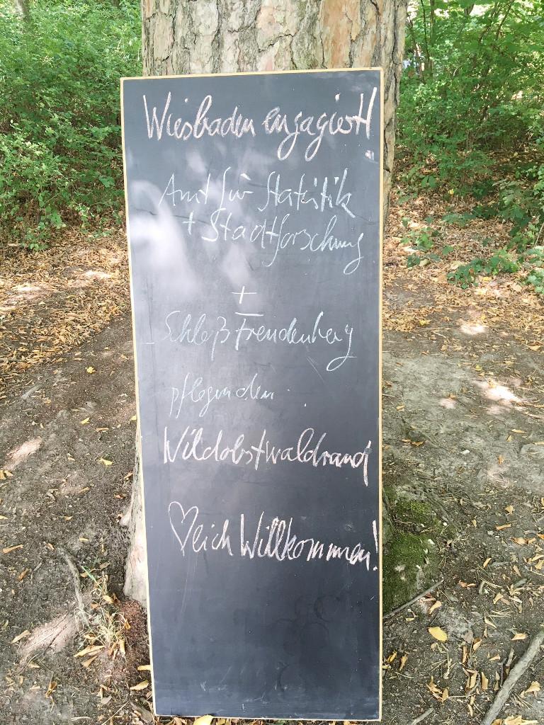 123 wea 2018 schloss freudenberg waldrand amt fuer statistik IMG 1798