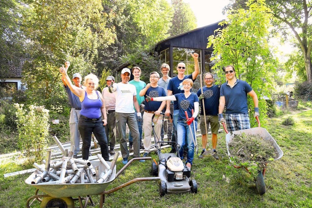 035B wea 2019 Cyperus Pflanzen Pflegen 20190822 KS LR 03