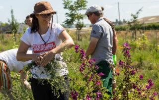 104 wea 2020 naturefund agroforst acker III 20200624 mw lr 15907